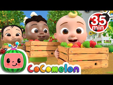 Learn to count with apples song