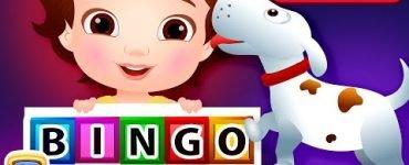 Bingo Dog Song Chuchu TV Classic